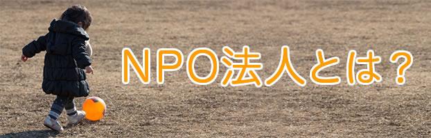 kiji_npohoujin2015